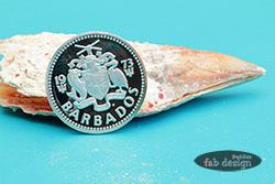 Fotografie Barbados Münze